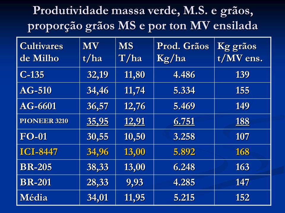 Produtividade massa verde, M. S