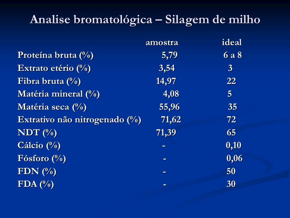 Analise bromatológica – Silagem de milho