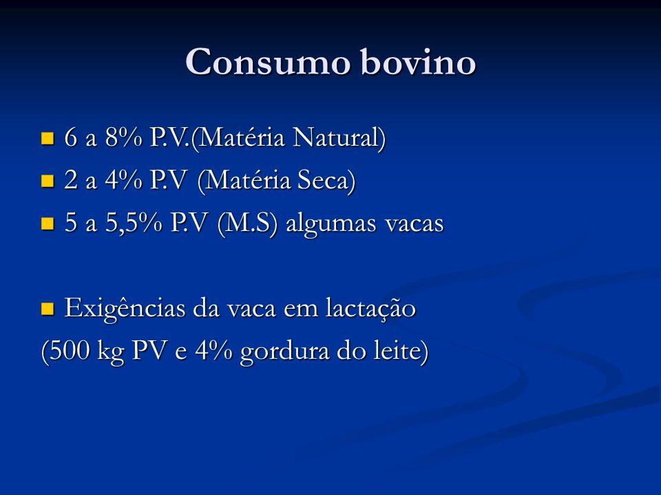 Consumo bovino 6 a 8% P.V.(Matéria Natural) 2 a 4% P.V (Matéria Seca)