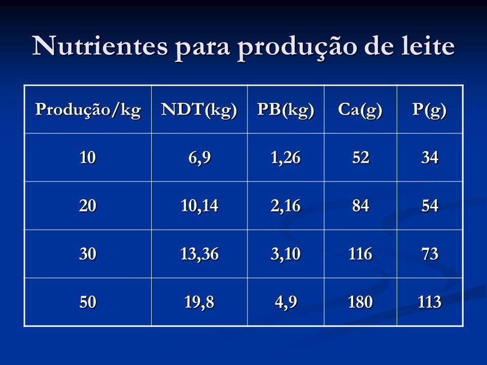 Nutrientes para produção de leite