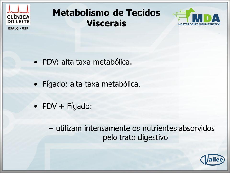 Metabolismo de Tecidos Viscerais