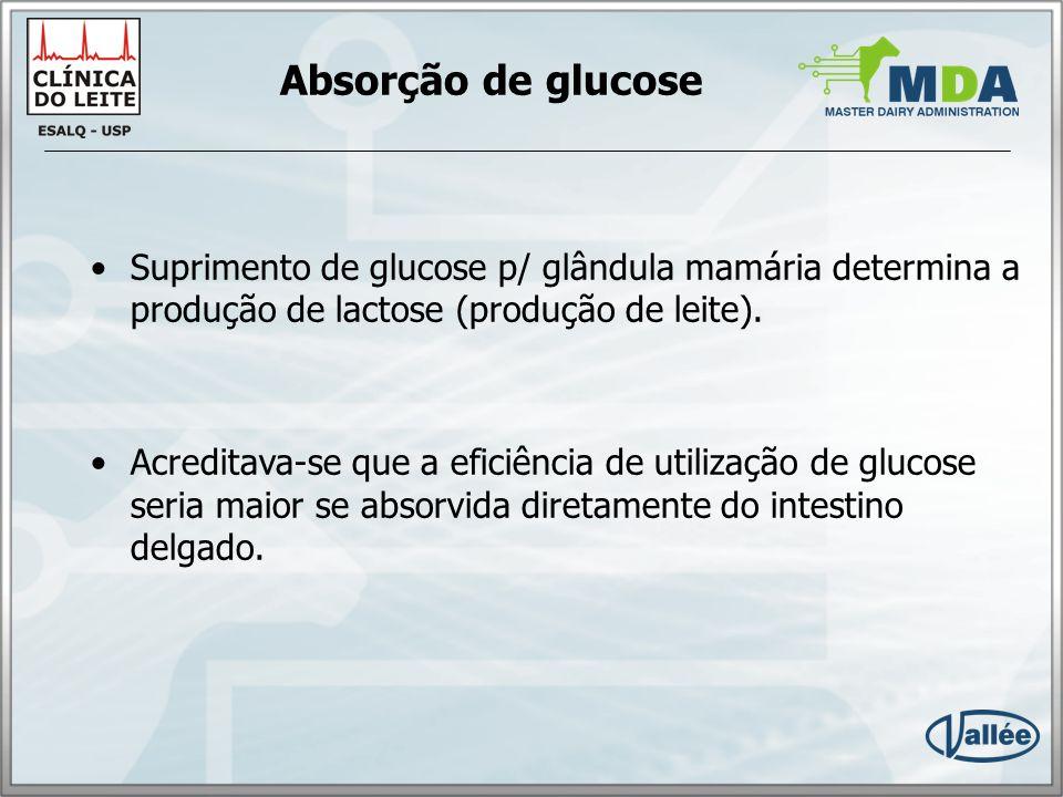 Absorção de glucose Suprimento de glucose p/ glândula mamária determina a produção de lactose (produção de leite).