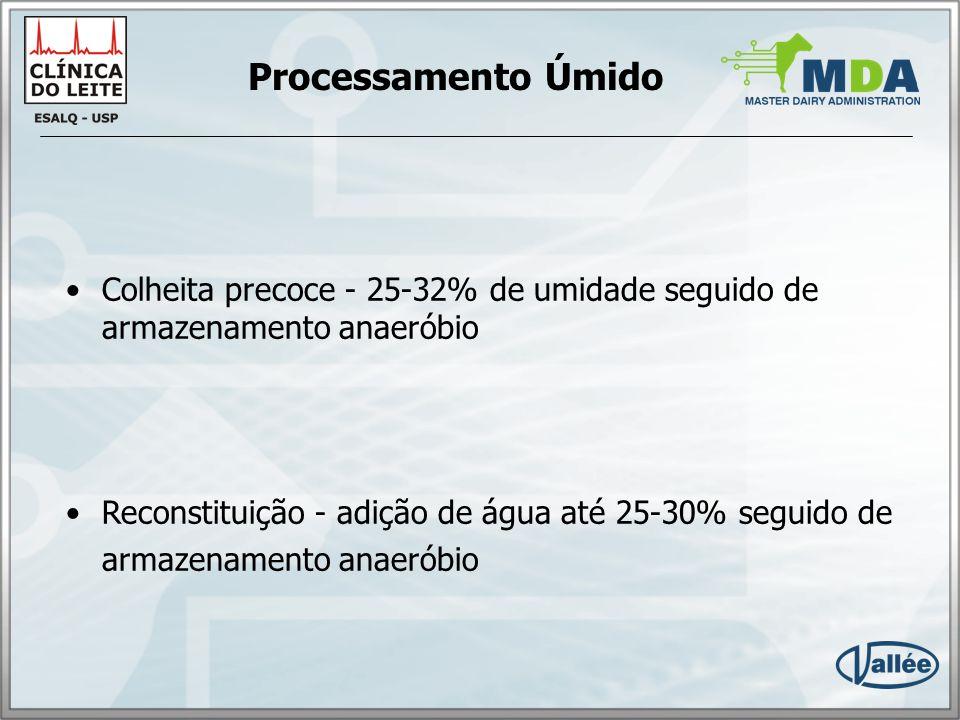 Processamento Úmido Colheita precoce - 25-32% de umidade seguido de armazenamento anaeróbio.