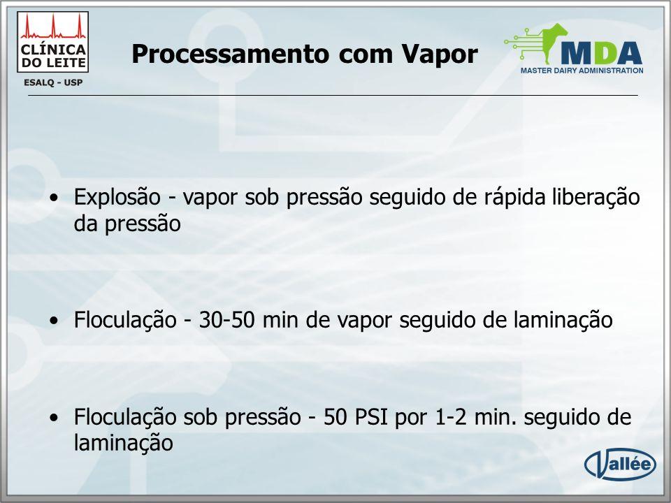 Processamento com Vapor
