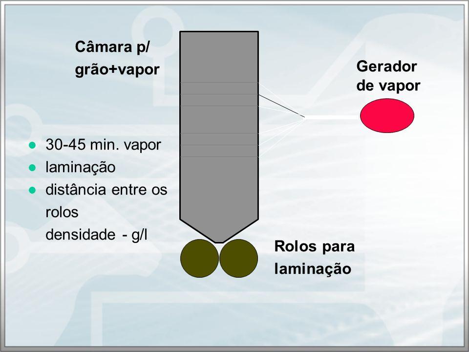 Câmara p/ grão+vapor. Gerador. de vapor. 30-45 min. vapor. laminação. distância entre os. rolos.