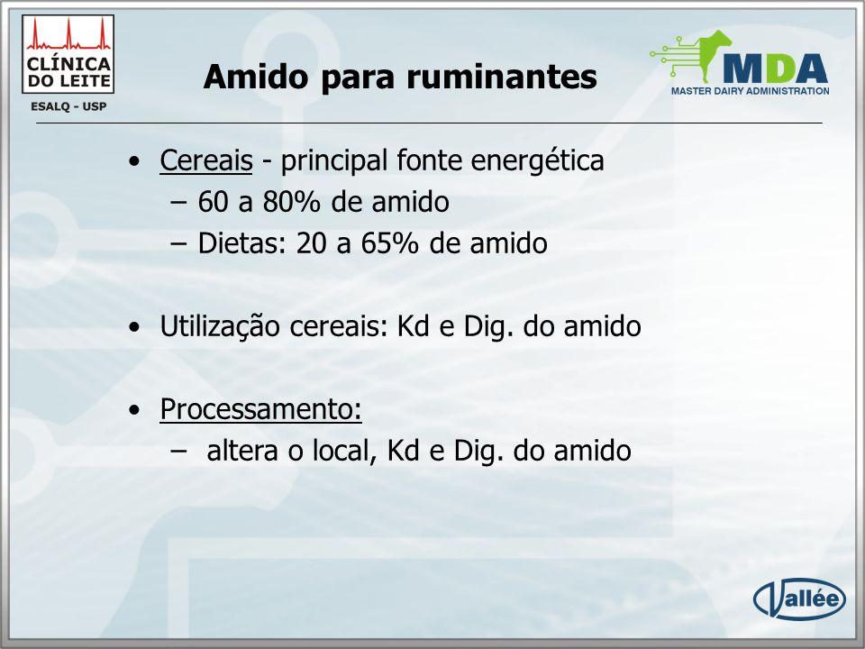 Amido para ruminantes Cereais - principal fonte energética