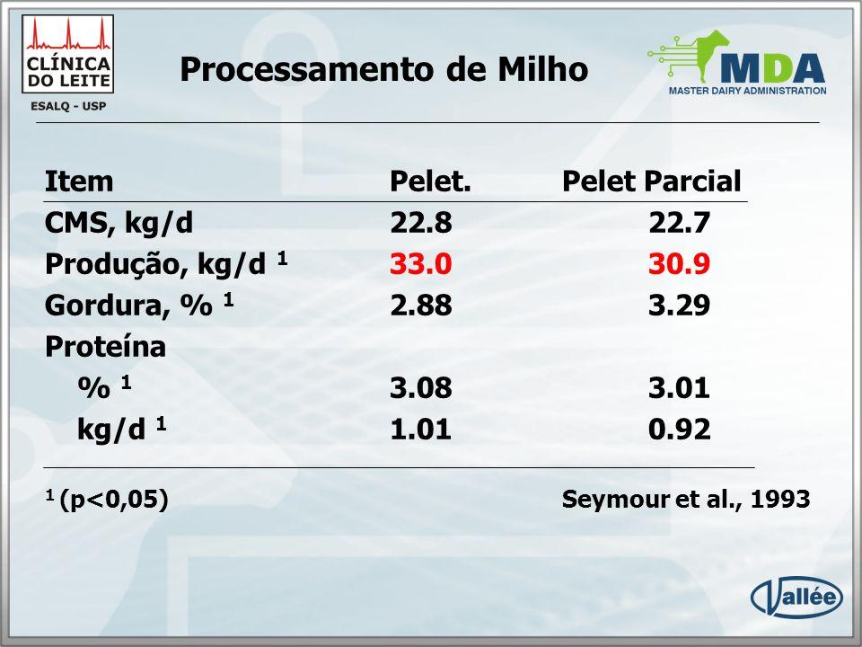 Processamento de Milho