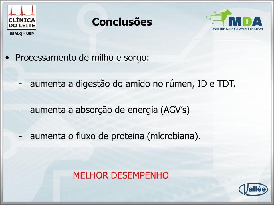 Conclusões Processamento de milho e sorgo: