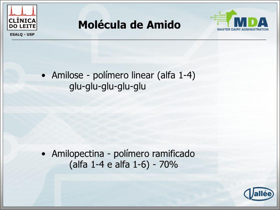 Molécula de Amido Amilose - polímero linear (alfa 1-4) glu-glu-glu-glu-glu.