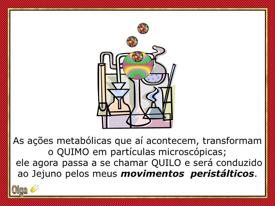 As ações metabólicas que aí acontecem, transformam o QUIMO em partículas microscópicas;