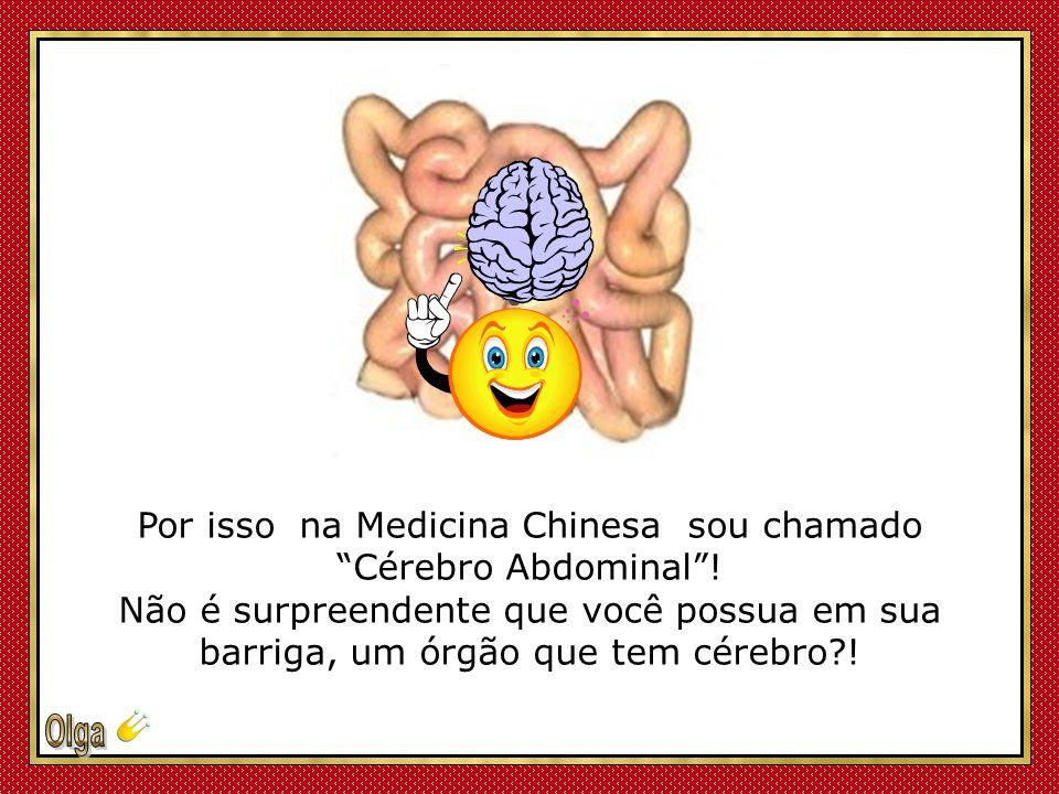 Por isso na Medicina Chinesa sou chamado Cérebro Abdominal !