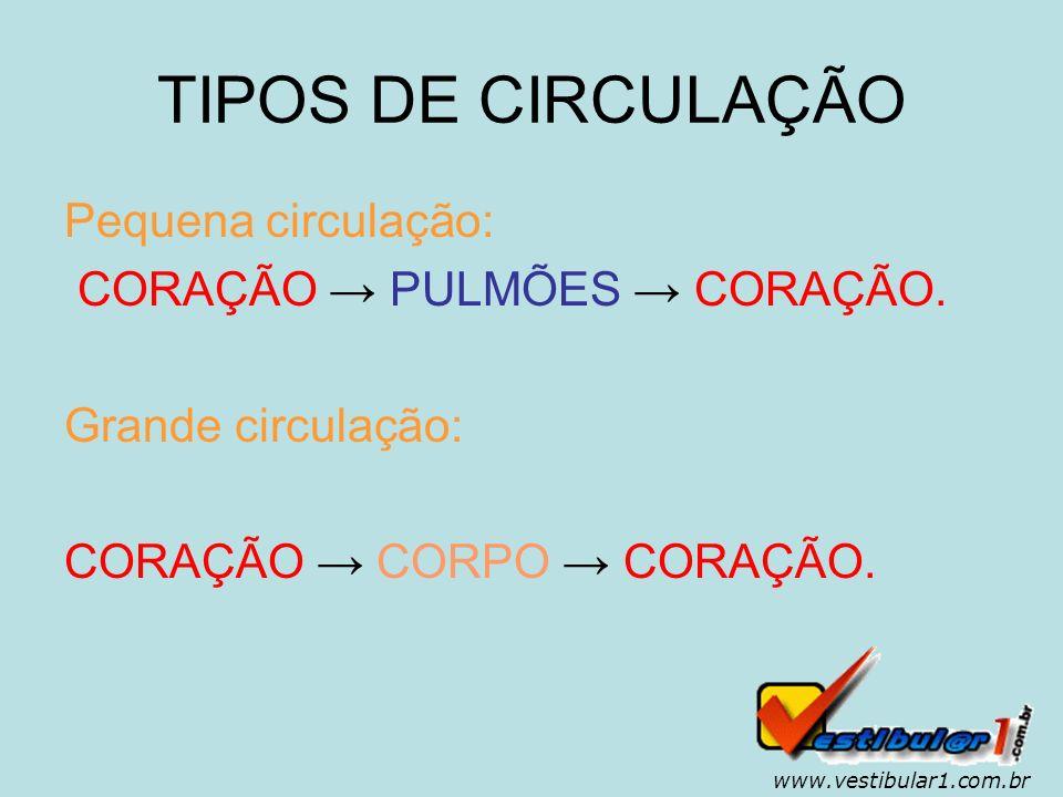 TIPOS DE CIRCULAÇÃO Pequena circulação: CORAÇÃO → PULMÕES → CORAÇÃO.