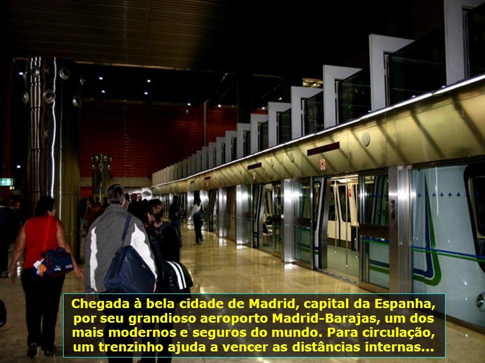 IMG_0807 - ESPANHA - MADRID - AEROPORTO INTERNA - TRENZINHO-700