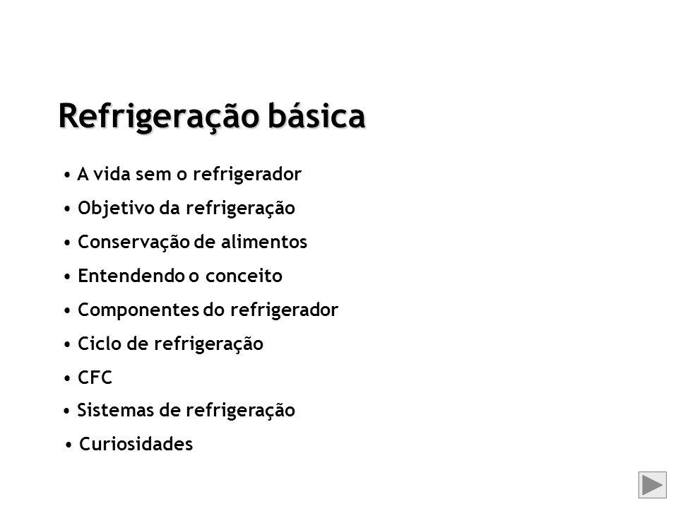 Refrigeração básica A vida sem o refrigerador Objetivo da refrigeração