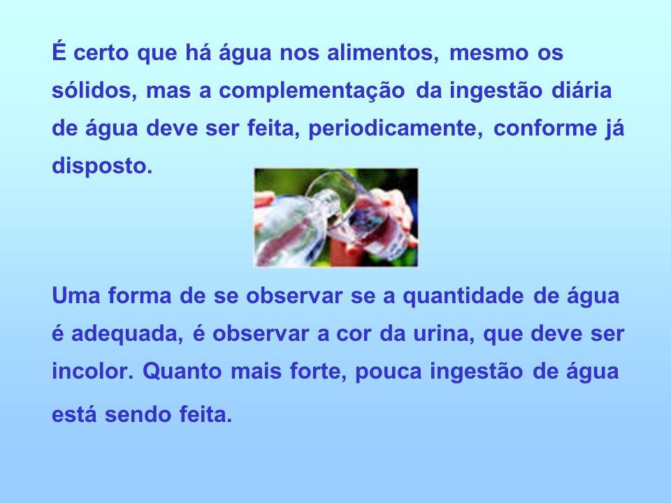 É certo que há água nos alimentos, mesmo os sólidos, mas a complementação da ingestão diária de água deve ser feita, periodicamente, conforme já disposto.