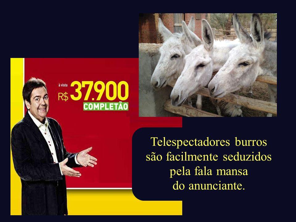 Telespectadores burros são facilmente seduzidos pela fala mansa