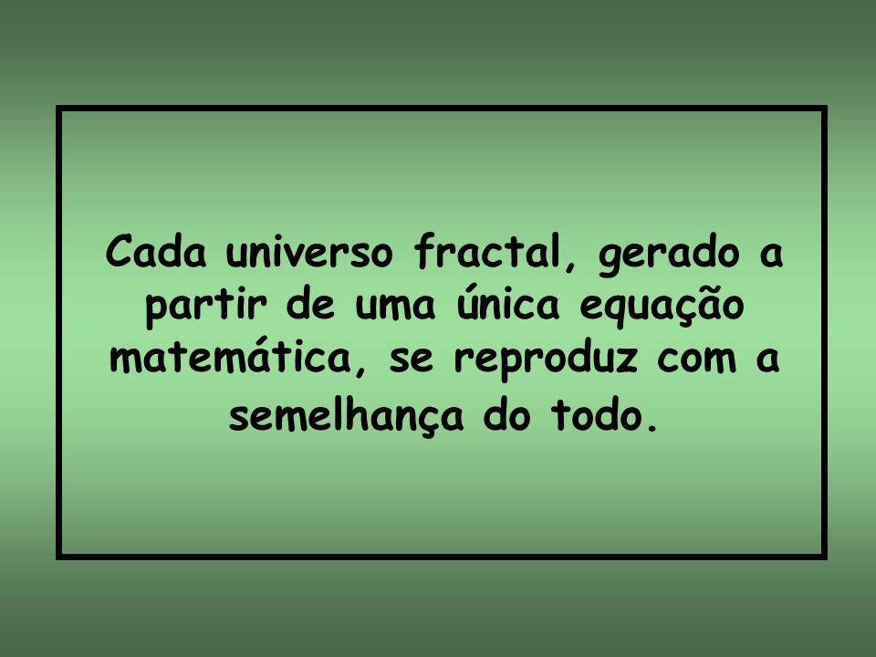 Cada universo fractal, gerado a partir de uma única equação matemática, se reproduz com a semelhança do todo.