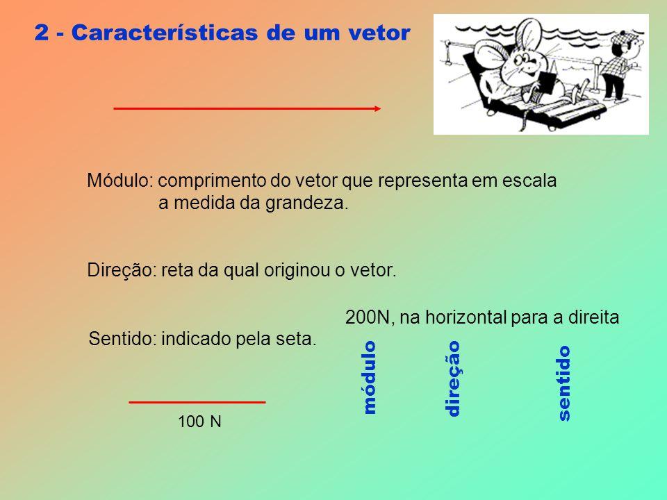 2 - Características de um vetor