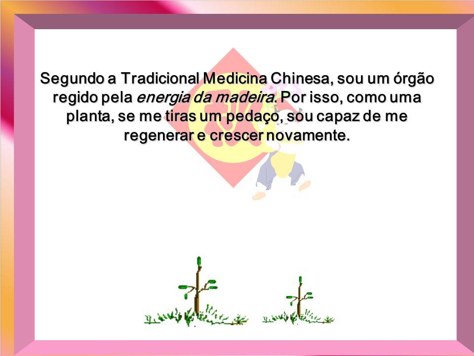 Segundo a Tradicional Medicina Chinesa, sou um órgão regido pela energia da madeira.