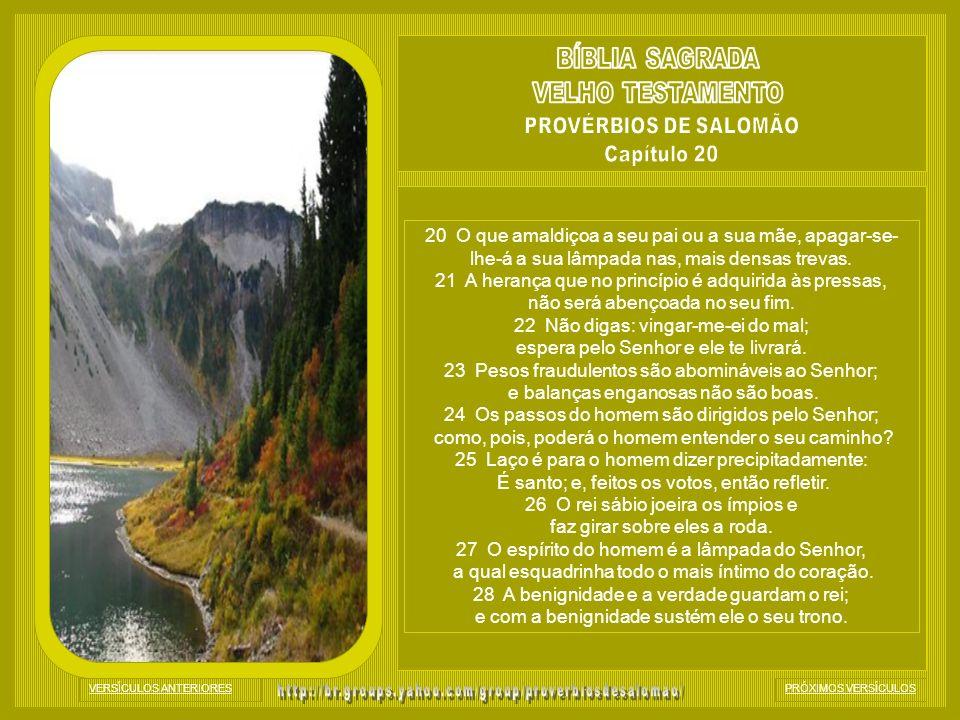 BÍBLIA SAGRADA VELHO TESTAMENTO PROVÉRBIOS DE SALOMÃO Capítulo 20