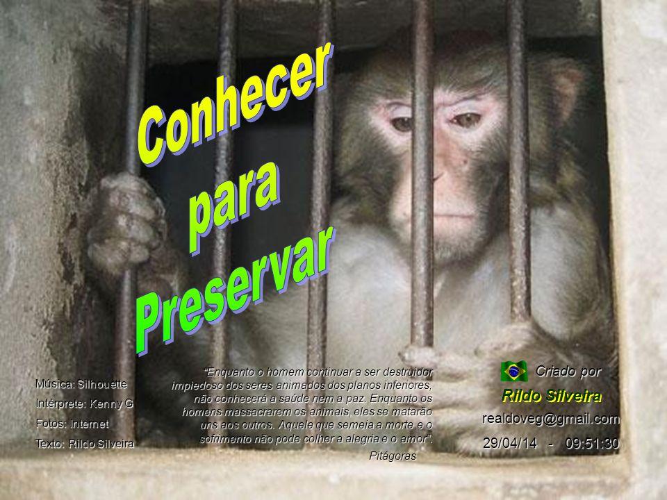 Conhecer para Preservar Rildo Silveira Criado por realdoveg@gmail.com