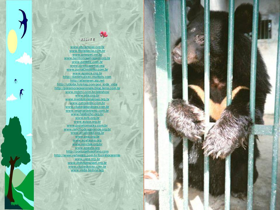 V I S I T E www.abcanimal.org.br. www.floraisecia.com.br. www.greepet.vet.br. www.territorioselvagem.org.br.