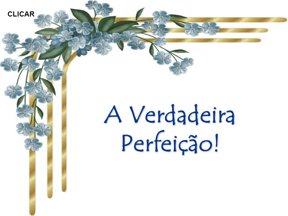 A Verdadeira Perfeição!