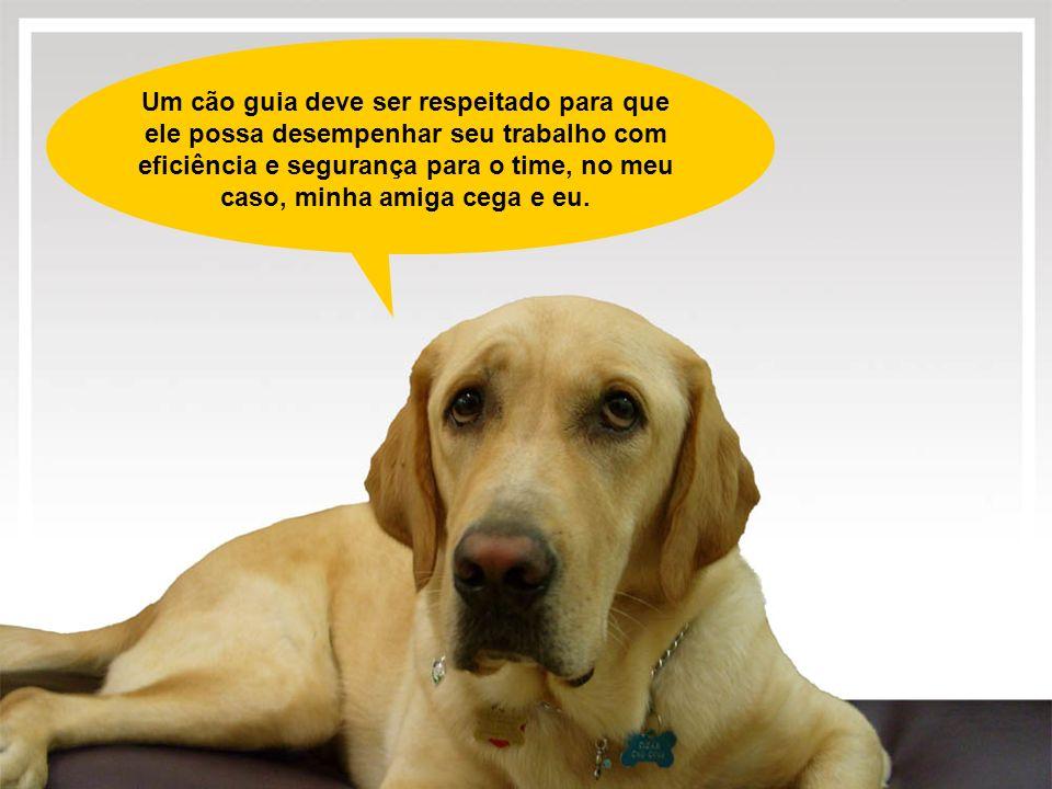 Um cão guia deve ser respeitado para que ele possa desempenhar seu trabalho com eficiência e segurança para o time, no meu caso, minha amiga cega e eu.