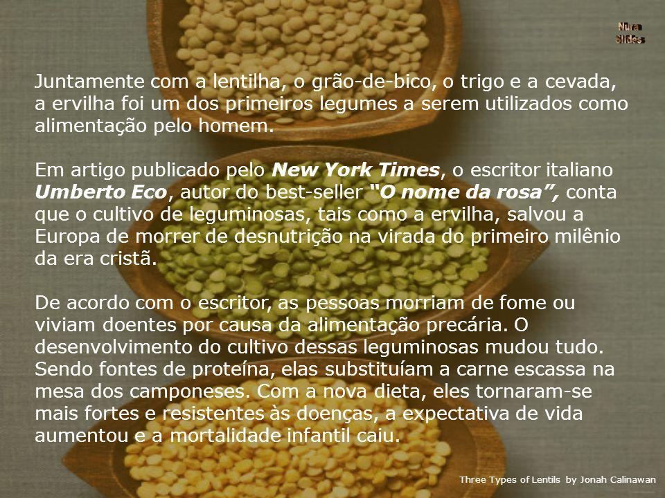 Juntamente com a lentilha, o grão-de-bico, o trigo e a cevada,