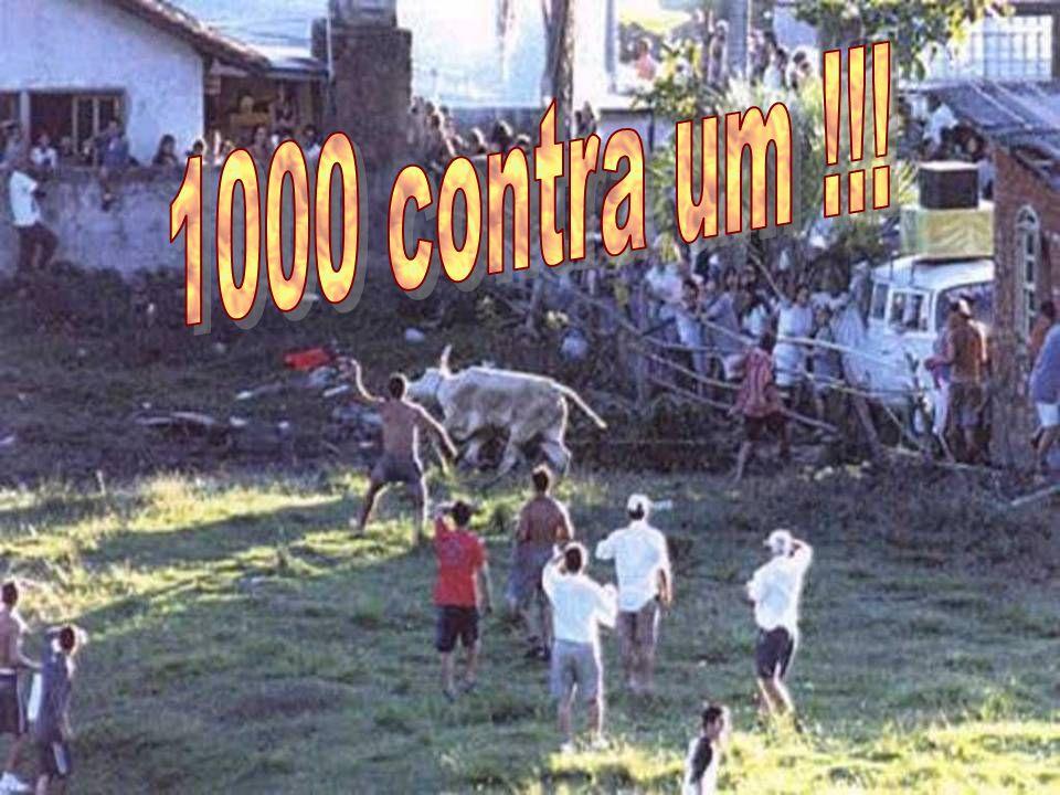 1000 contra um !!!