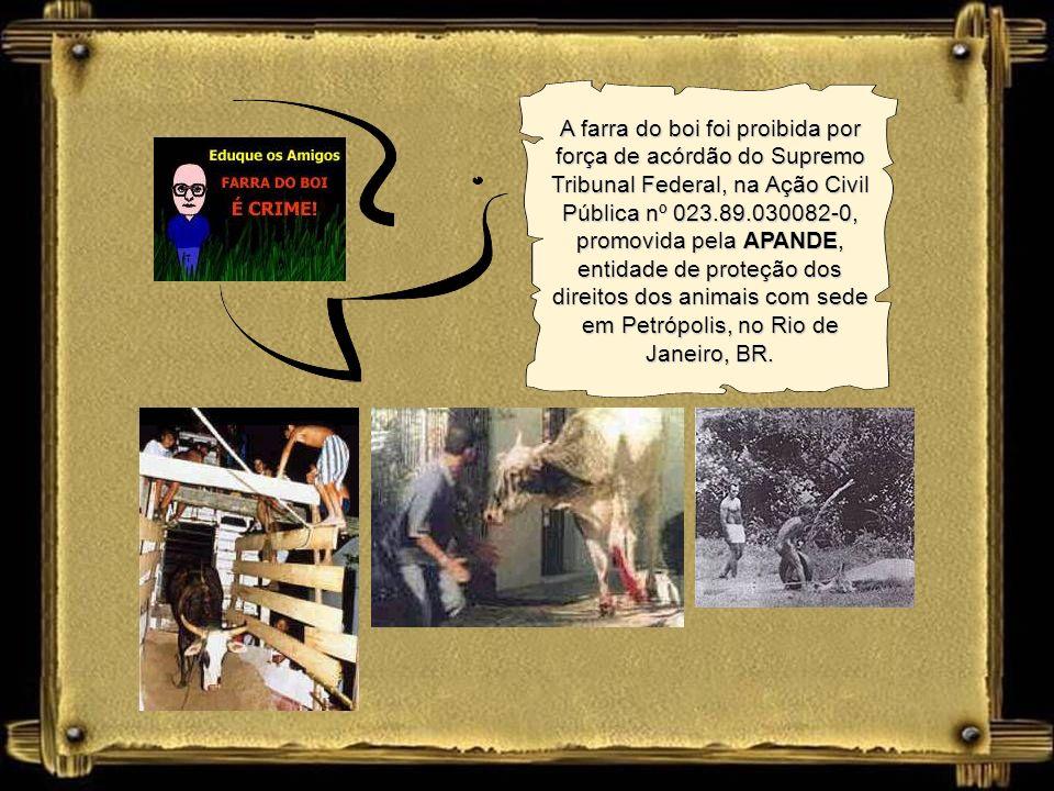 A farra do boi foi proibida por força de acórdão do Supremo Tribunal Federal, na Ação Civil Pública nº 023.89.030082-0, promovida pela APANDE, entidade de proteção dos direitos dos animais com sede em Petrópolis, no Rio de Janeiro, BR.