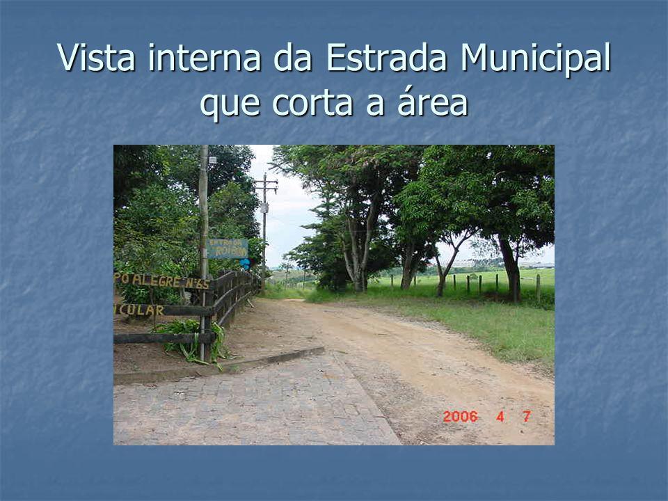Vista interna da Estrada Municipal que corta a área