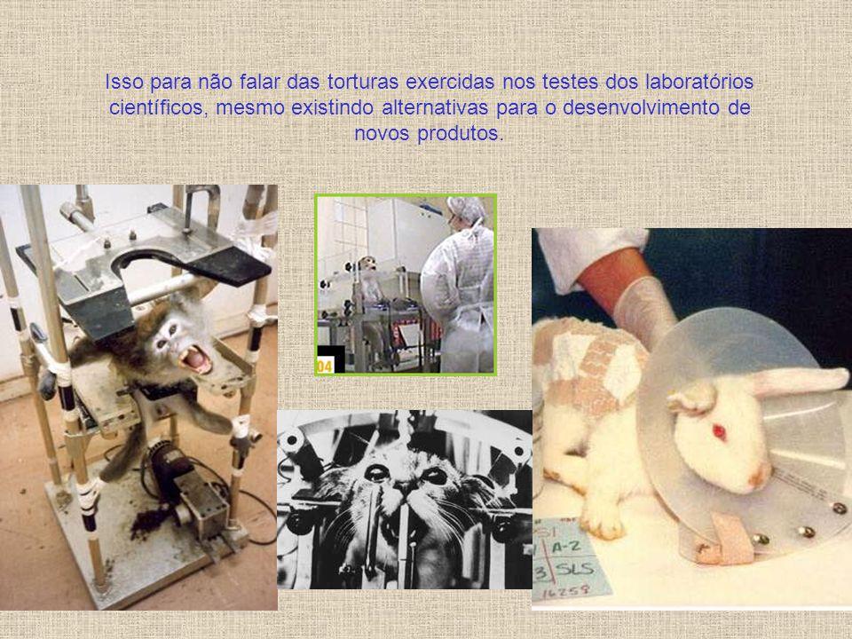 Isso para não falar das torturas exercidas nos testes dos laboratórios científicos, mesmo existindo alternativas para o desenvolvimento de novos produtos.