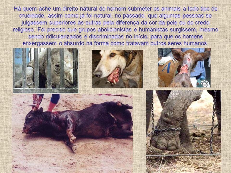 Há quem ache um direito natural do homem submeter os animais a todo tipo de crueldade, assim como já foi natural, no passado, que algumas pessoas se julgassem superiores às outras pela diferença da cor da pele ou do credo religioso.