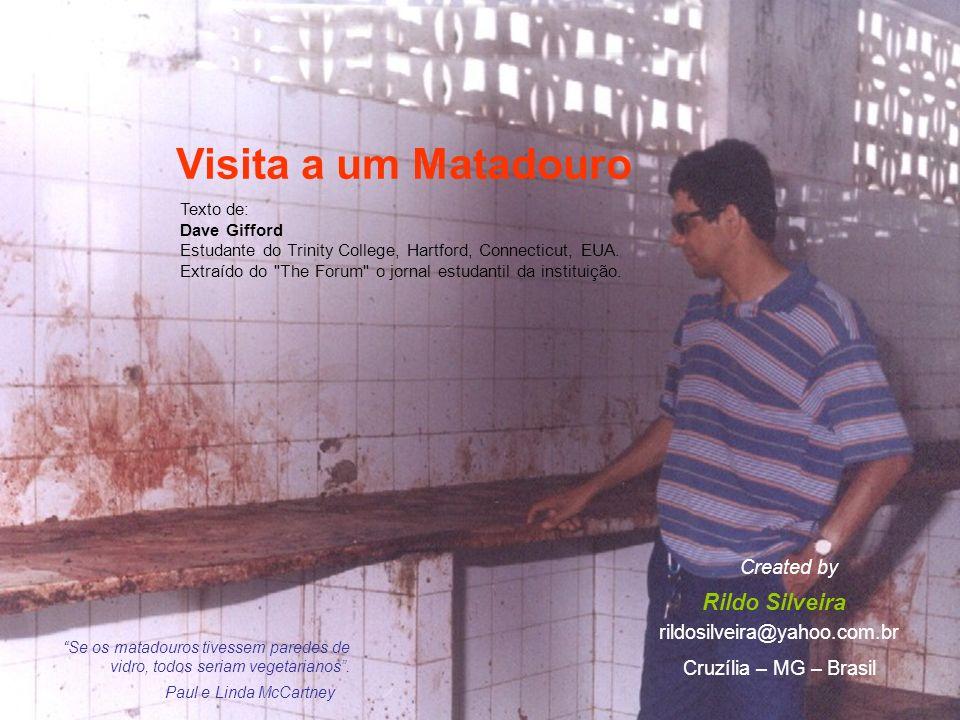 Visita a um Matadouro Rildo Silveira Created by