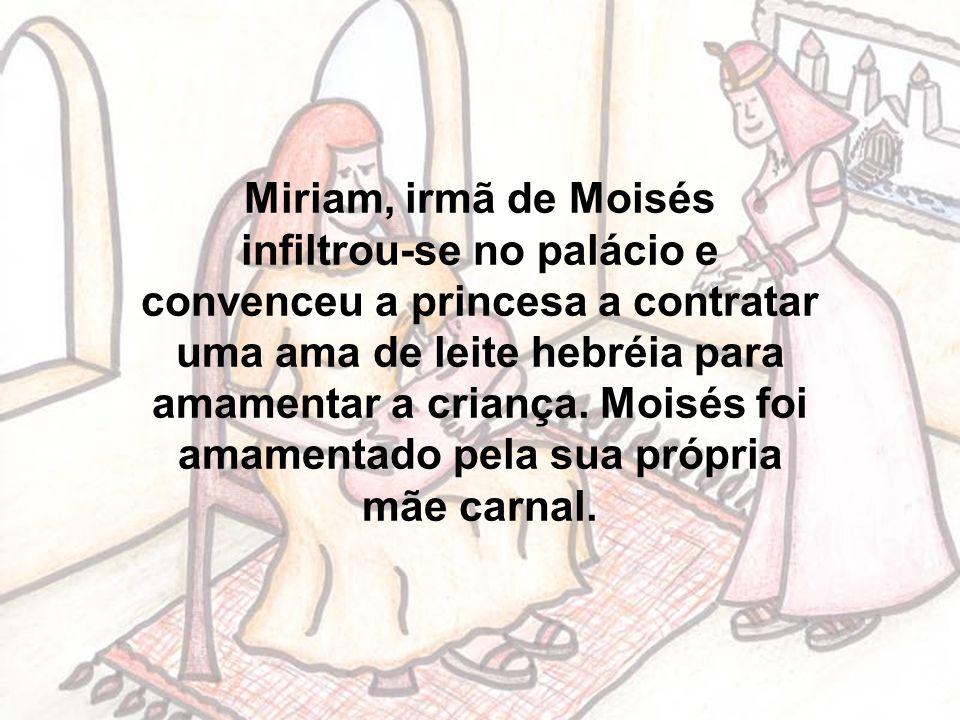 Miriam, irmã de Moisés