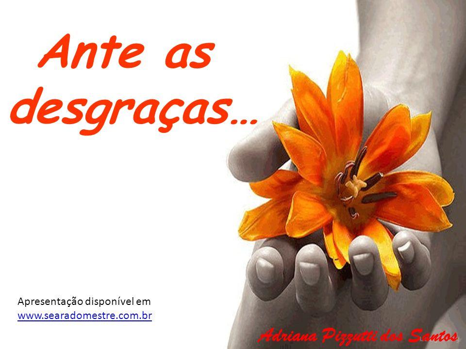 Ante as desgraças… Adriana Pizzutti dos Santos