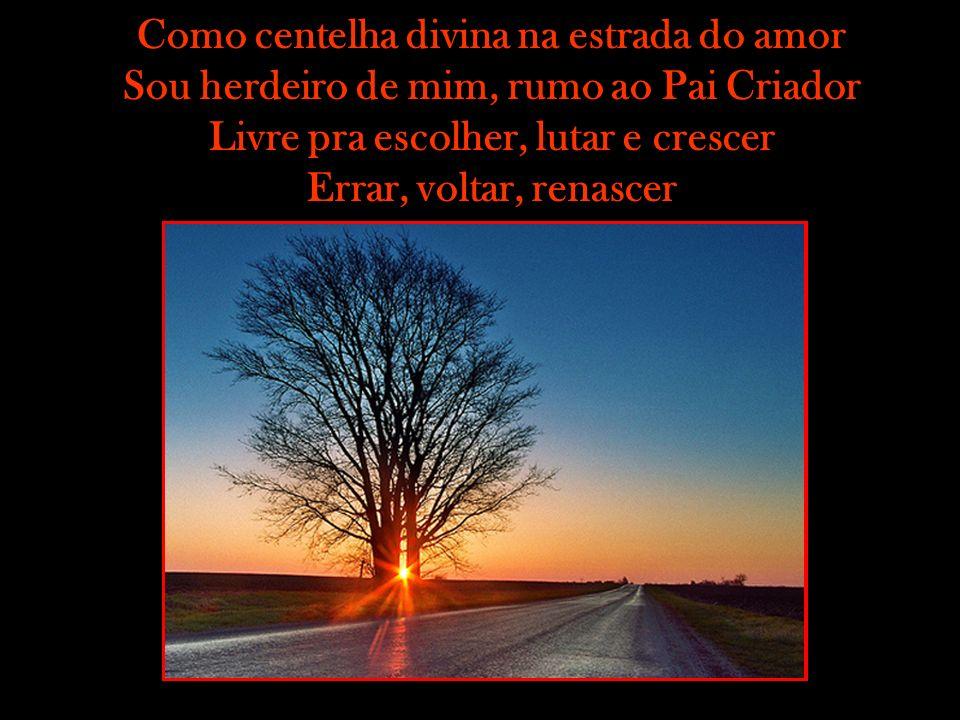 Como centelha divina na estrada do amor