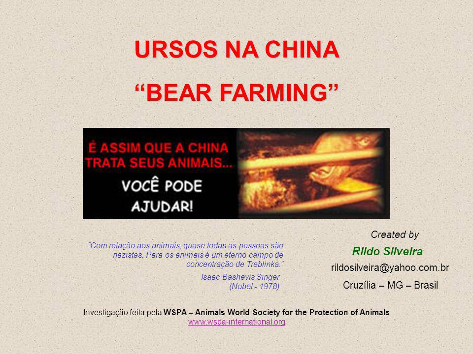 URSOS NA CHINA BEAR FARMING