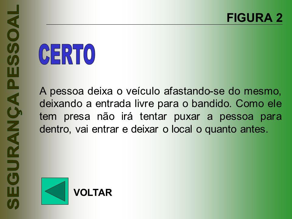 FIGURA 2 CERTO.