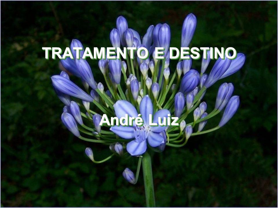 TRATAMENTO E DESTINO André Luiz