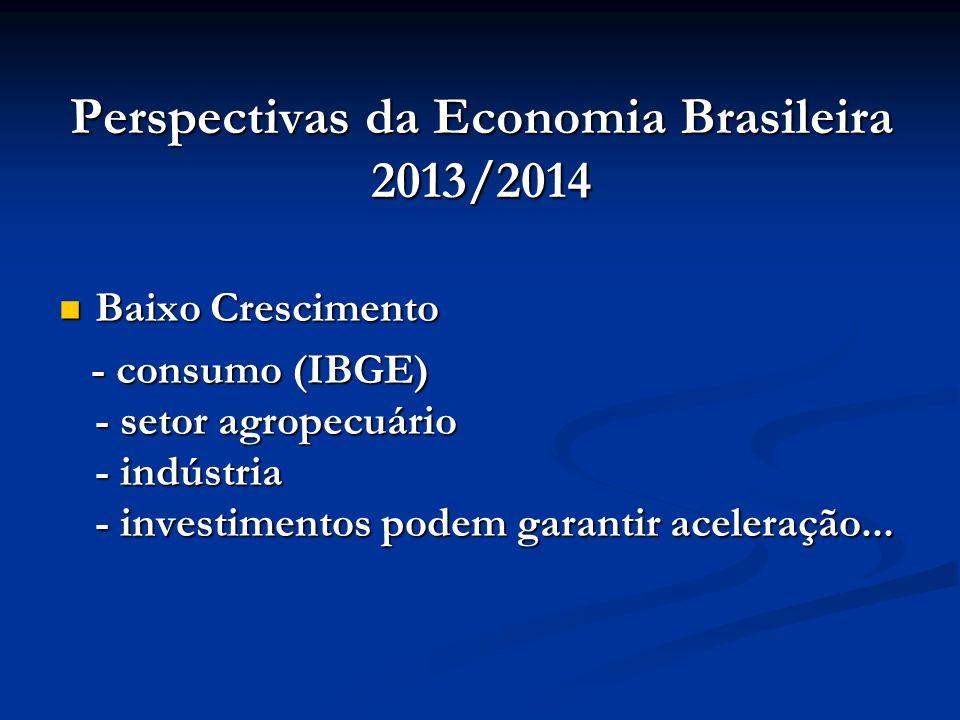 Perspectivas da Economia Brasileira 2013/2014