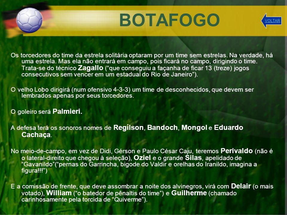 BOTAFOGO VOLTAR.