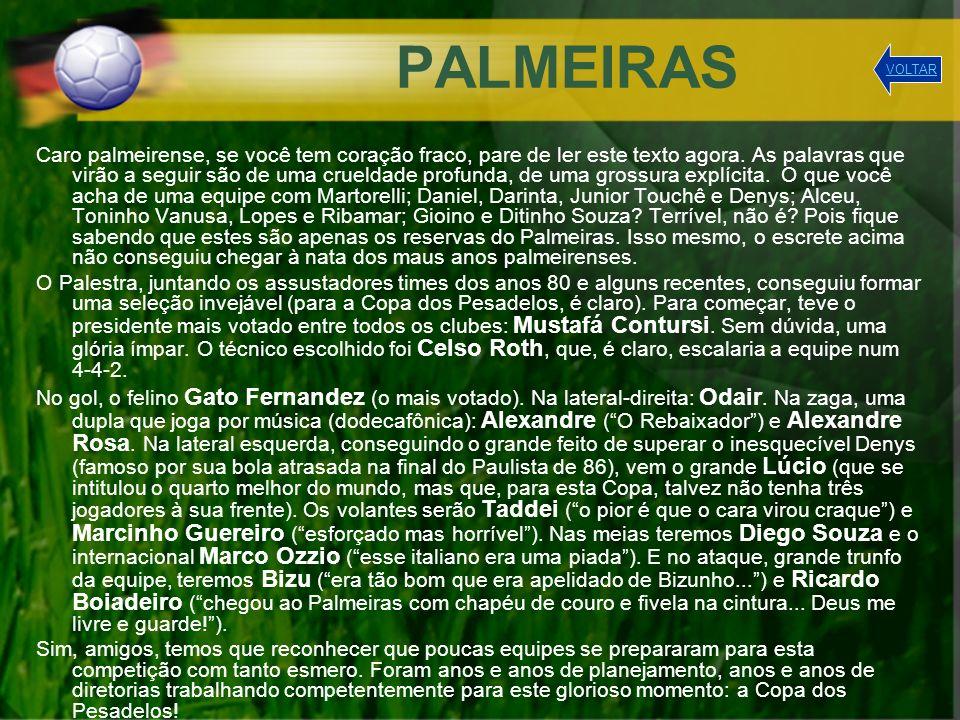 PALMEIRAS VOLTAR.