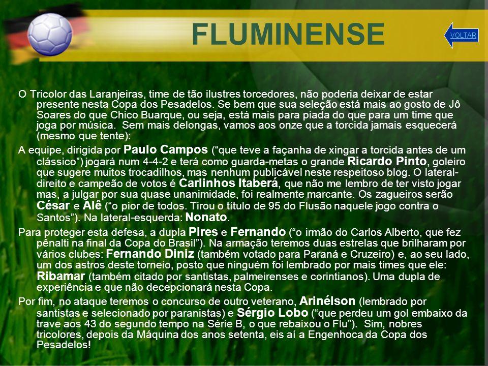 FLUMINENSE VOLTAR.