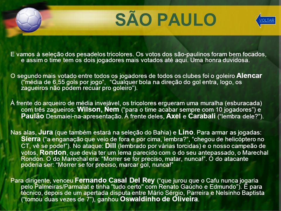 SÃO PAULO VOLTAR.