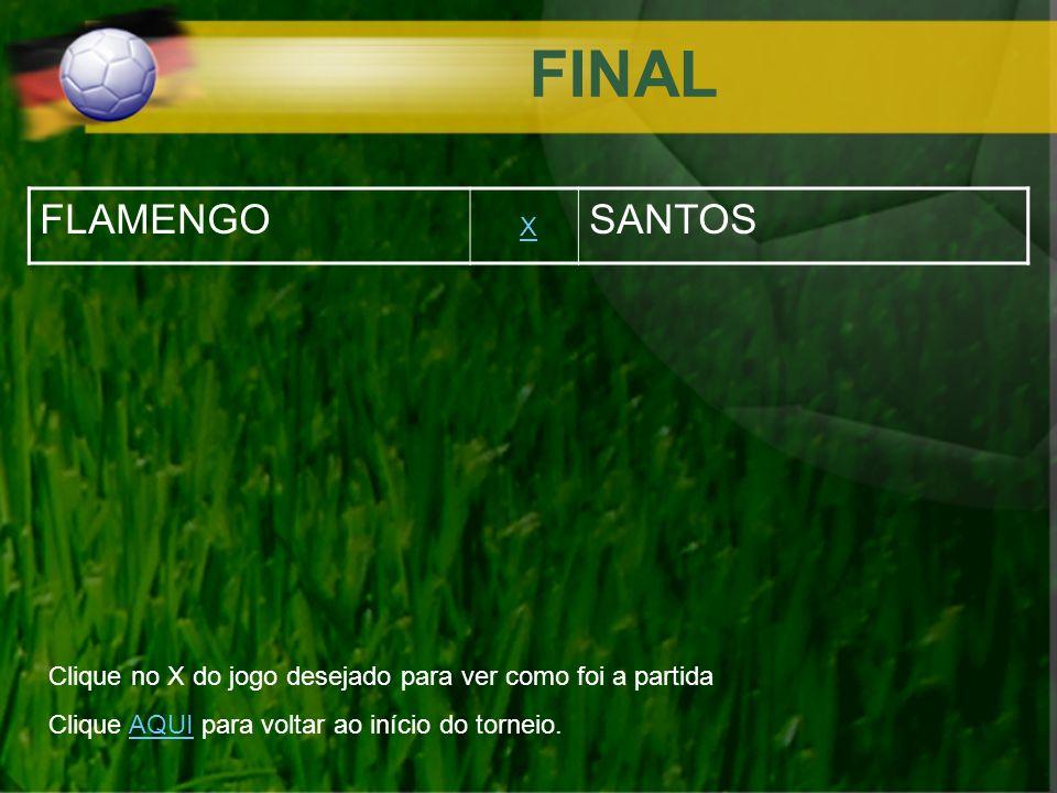 FINAL FLAMENGO SANTOS X