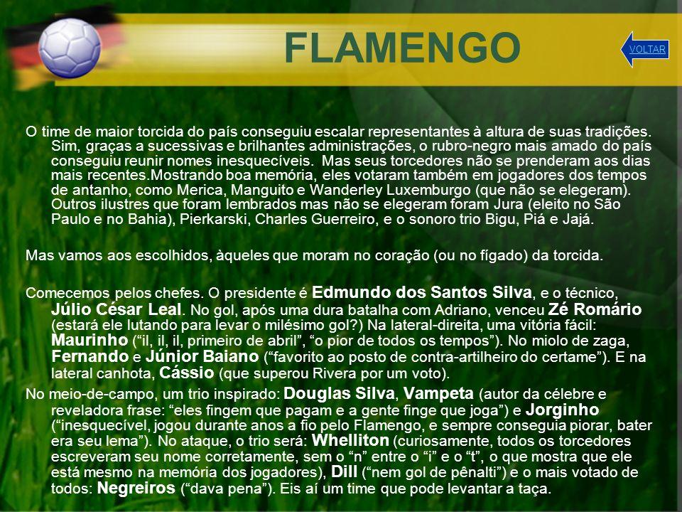 FLAMENGO VOLTAR.