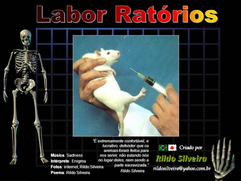 Labor Ratórios Criado por rildosilveira@yahoo.com.br