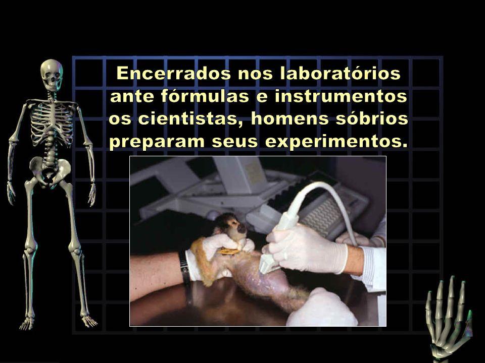 Encerrados nos laboratórios ante fórmulas e instrumentos